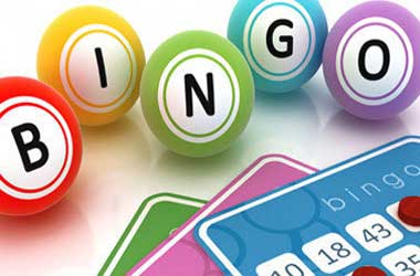 See all Of the Live Online Bingo and Casino Options for Players