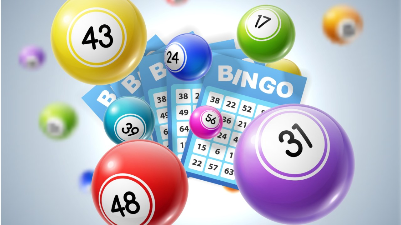 See The Bingo Game Options You Have Offered to You